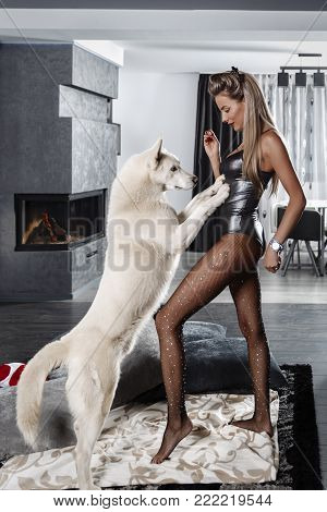 Beautiful Woman And Her Pet Dog Companion In The Apartment
