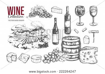 Wine set. Vector hand drawn elements including wine glass, bottle, grape, vineyard landscape, cheese, barrel with wine. Sketch style