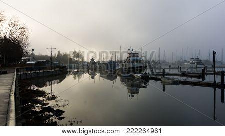 Boating docks on a cold, misty morning