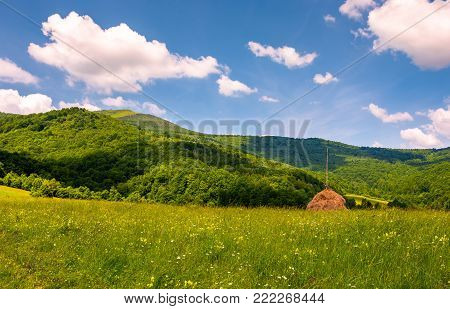 hay stack on the grassy meadow in mountain. beautiful countryside landscape under the blue sky with some clouds in summertime