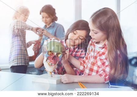 Vividness for knowledge. Active interested intelligent children using special model while attending biology class and fulfilling practical assignment