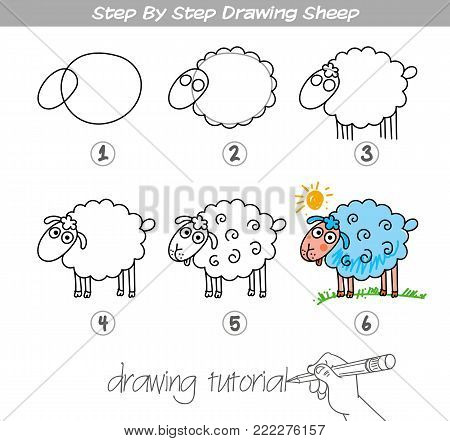 Drawing tutorial. Step by step drawing Sheep. Easy to drawing Sheep for Children. Funny cartoon character. Vector illustration