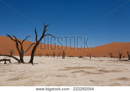 A view from Dead Vlei, Sossusvlei Namibia
