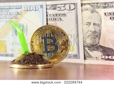 The concept of financial growth with golden stairs of bitcoins, a small growth of the symbol of growth of background dollars, a small green plant. Photos new virtual money .