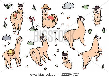 Vector Set Of Characters. Illustration Of South America Cute Lama With Decorations. Isolated Outline