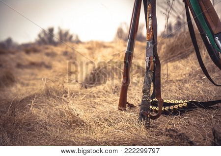 Hunting scene in wild west with hunting shotguns and ammunition belt on dry grass in rural field during hunting season as hunting background with copy space