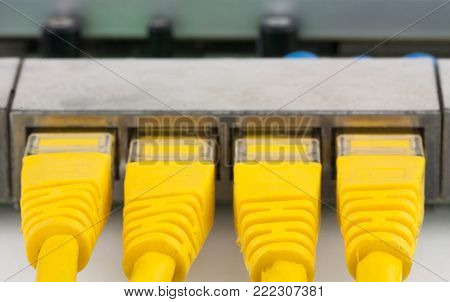closeup UTP RJ-45 yellow connectors into routers ports on the white background