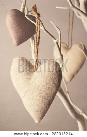 Crafted fabric and papier mache hearts tied with string to white tree branches. Subtly filtered with aged feel in faded pink tones.