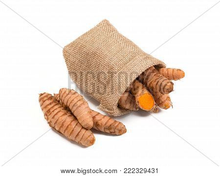 Raw turmeric root in burlap sack isolated on white background