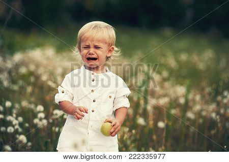 upset crying baby . Boy crying on a walk holding an Apple