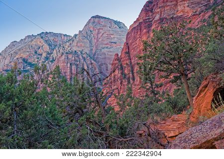 Canyon in the state of Utah southwest of the United States. Impressive rock formations and deep gorges engraved and shaped by the strength of the waters of the Virgin-river.