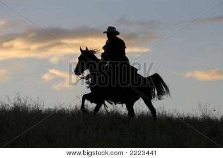 Cowboy On Horseback,Silhouette
