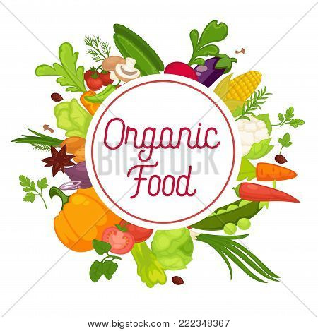 Vegetables healthy food poster of organic veggie, fresh healthy cabbage and vegetarian food. Vector lettuce vegetable, spice herbs or tomato and cauliflower or broccoli, pea bean, beet and pepper