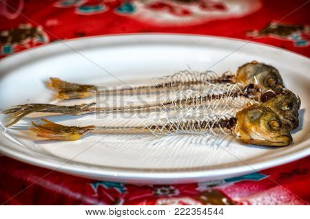 Skeleton of fish on a plate. On the plate are three fish heads and skeletons. Selective focus