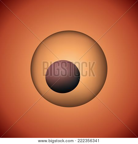 One fertilized zygote vector illustration. 3D image of reproductive development.