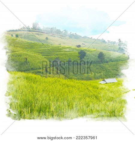 Shack in rice field terrace with mountain and blue sky background. Watercolor painting (retouch).