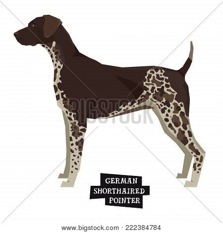 Dog collection German shorthaired pointer Geometric style Isolated object set