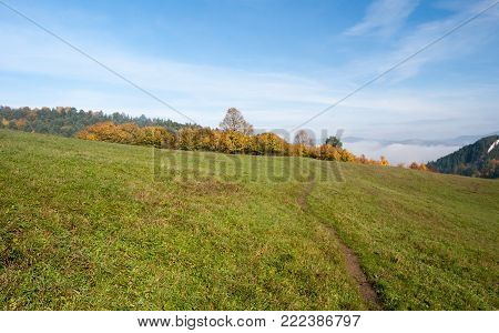 autumn meadow with colorful trees, pathway and blue sky above Hricovske Podhradie village in Sulovske vrchy mountains in Slovakia