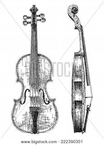 Vector graphic arts sketch of drawing violin (black pen).