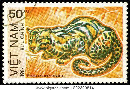 Ukraine - circa 2018: A postage stamp printed in Vietnam show Marbled Cat or Felis marmorata. Series: Endangered Animals. Circa 1984.