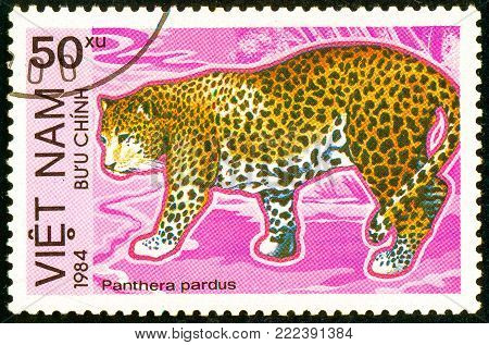 Ukraine - circa 2018: A postage stamp printed in Vietnam show Leopard or Panthera pardus. Series: Endangered Animals. Circa 1984.