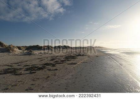 On The North Frisian Island Amrum In Germany