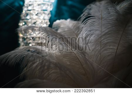 Feather on a dark background macro. Silhouette of a blue and white feather abstract artistic image for design.