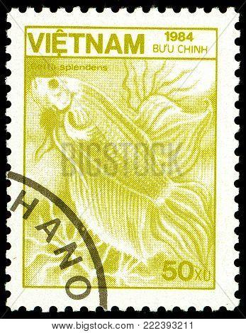 Ukraine - circa 2018: A postage stamp printed in Vietnam show Siamese Fighting Fish or Betta splendens. Series: Fauna and Flora. Circa 1984.