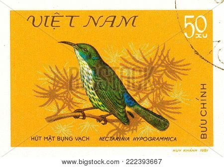 Ukraine - circa 2018: A postage stamp printed in Vietnam show bird Purple-naped Sunbird or Hypogramma hypogrammicum. Series: Birds. Circa 1981.