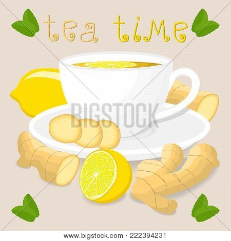 Vector illustration logo for white ceramic cup tea, sliced citrus yellow lemon, chopped round ginger on saucer. Ginger pattern of glass teacup brewed in porcelain cups. Drink gingers teas from saucers