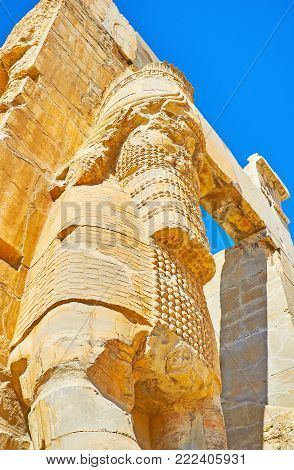 Close-up of the ancient statue of Assyrian deity Lamassu, carved on the facade wall of the All Nations Gate (Xerxes Gate) in Persepolis archaeological site, Iran.