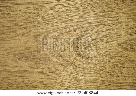 Veneer sapel. Background is yellow-brown. Texture configuration of figured wood. Backdrop or background wooden.