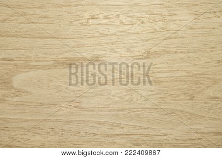 Veneer made from American walnut wood. Background light gray with dark lines. Backdrop or background wooden.