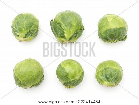 Brussels sprout six heads pattern top view isolated on white background