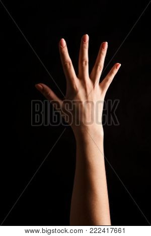 Female hand showing back side of open palm, number five isolated at black background. Counting, gesturing, enumeration concept, cutout, copy space