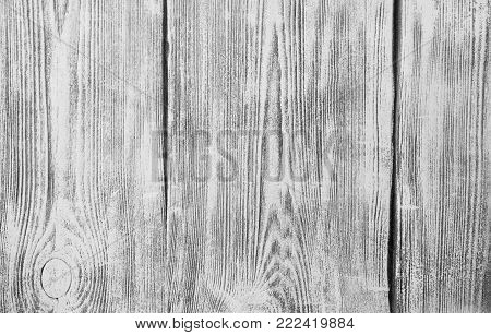 Gray Wood Surface background. Gray background of old boards