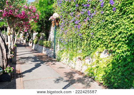 Beautiful summer street of Anacapri, Capri island, Italy