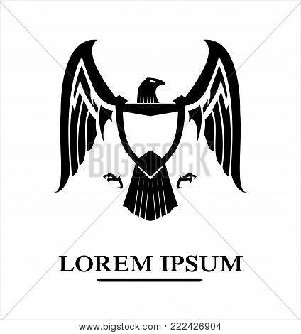 eagle, hawk, falcon, black eagle on white background
