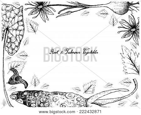 Root and Tuberous Vegetables, Illustration Frame of Hand Drawn Sketch of Water Caltrop, Wasabi and Camas Plants Isolated on White Background.