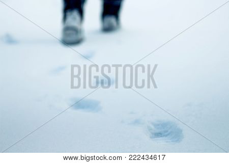 Blur on a winter day on the snow traces of human legs are visible, in the distance one can see feet, a symbol of purposefulness and movement forward