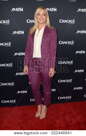 LOS ANGELES - JAN 14:  Elisabeth Rohm at the Crackle's