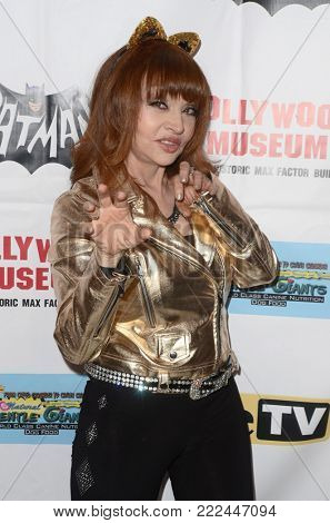 LOS ANGELES - JAN 10:  Judy Tenuta at the Batman '66 Retrospective and Batman Exhibit Opening Night at the Hollywood Museum on January 10, 2018 in Los Angeles, CA