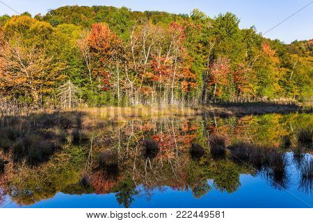 Foliage of autumn forests is reflected in ponds. Magnificent resort in French Canada - Mont Tremblant. The pond is smooth like a mirror. Concept of ecological tourism