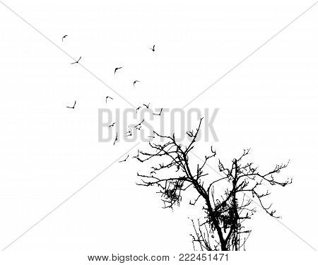 on a white background silhouette of a tree and birds fly like branches of a tree
