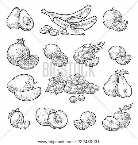 Set fruits. Mango, lime, banana, maracuya, avocado, dragon, lemon, orange, garnet, peach apple pear grape plum passion Vector color vintage engraving illustration isolated on white