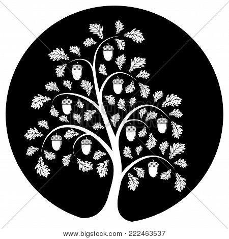 vector oak tree isolated on black round