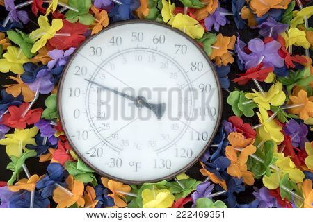 Freezing temperature on thermometer surrounded with fabric flowers on black.