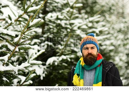 Man With Beard Holds Fur Coat. Luxury Clothing Concept.