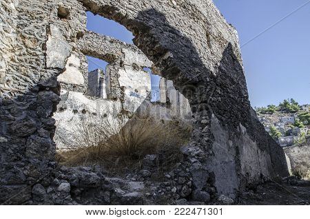 Turkey, the ghost town of Kayak, a close-up view of a ruined house, inside the house a shrub grows