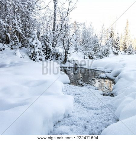 Picture of a stream in a snow landscape in Canada.
